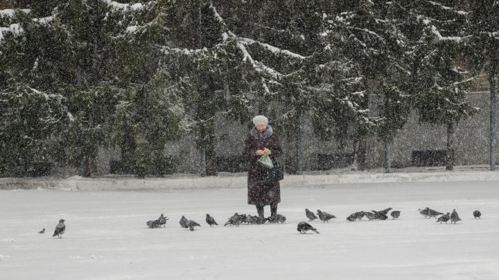 МЧС предупреждает тюменцев о приближающейся непогоде. Ожидается шквалистый ветер и снегопад