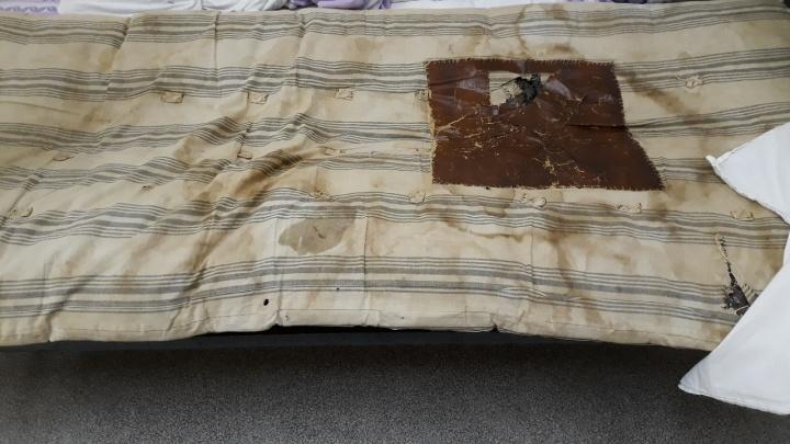 «Это просто клоповник!»: жительница Прикамья пожаловалась на насекомых в кровати детской больницы