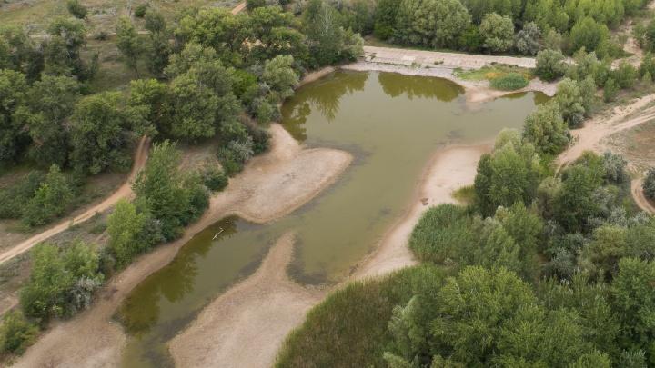 «Мы с вами на мели»: волгоградские власти не хотят наполнять водой ерики Волго-Ахтубинской поймы