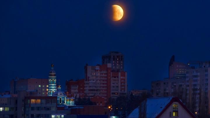 Зима, прощай: вспоминаем самые яркие события Уфы и Башкирии