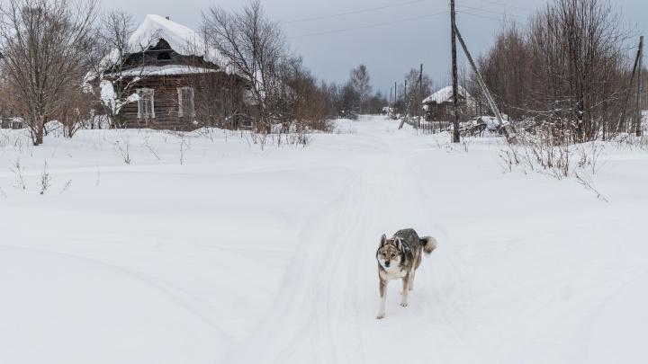 Барабан и Таз Татарский: Росреестр составил топ самых необычных названий поселений в Прикамье