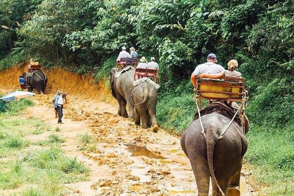 Жителю Кургана, перенесшему в Таиланде операцию, можно вернуться домой. Но денег нет