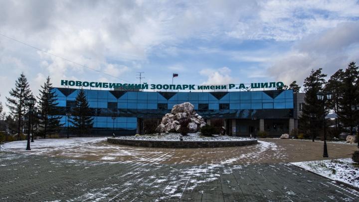 Новосибирский зоопарк откроет ещё один вход для посетителей