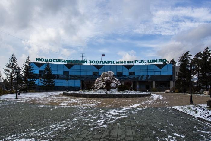 Основной вход в Новосибирский зоопарк находится со стороны улицы Жуковского