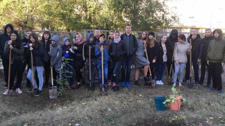 «У вас много бродячих собак и мусора»: немецкие школьники понаблюдали за жизнью в Волгограде