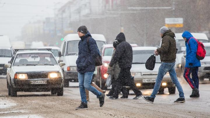 Волгоград осыпало первым снегом: город сковали пробки, а соцсети наполнились милотой