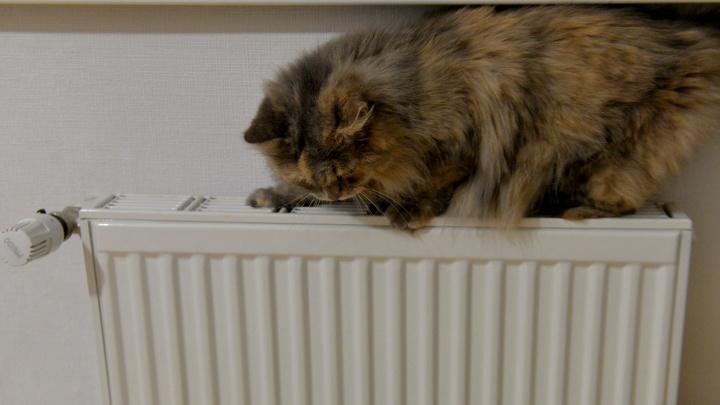 В центре Екатеринбурга 90 домов остались без отопления из-за коммунальной аварии