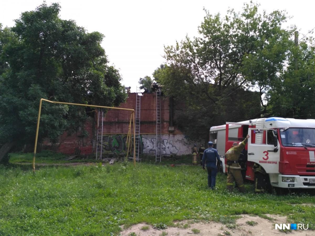 Подрядчик приступил кпосеву натурального газона наполе стадиона «Нижний Новгород»