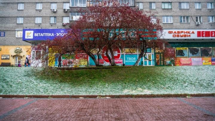 Зима навалилась (фото и видео)