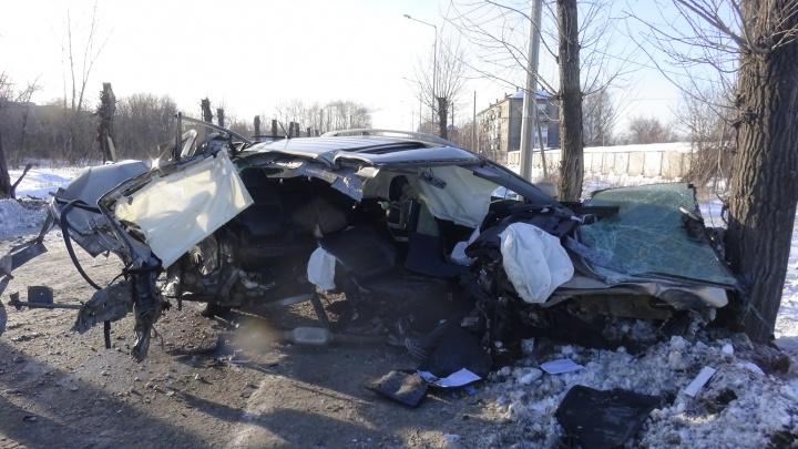 В Нижнем Тагиле водитель Mitsubishi врезался в дерево на большой скорости и погубил своего пассажира