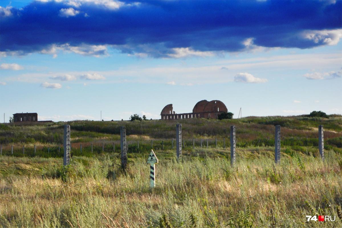 Единственный знак радиационной опасности затерялся в поле и стоит к дороге спиной