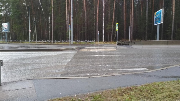 ГИБДД Перми ищет очевидцев аварии с пешеходом в Сосновом бору