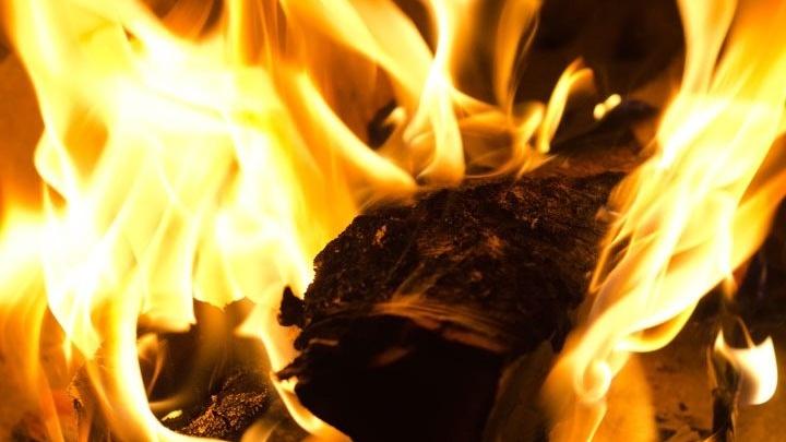 Пьяная девушка подожгла траву и получила срок за сгоревшие 10 гектаров леса