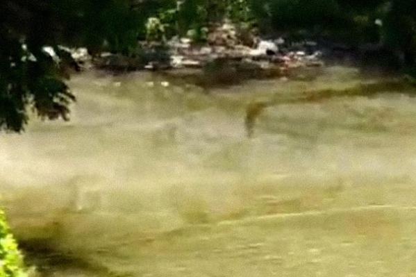 Самарцы начали бить тревогу, увидев пар над озером
