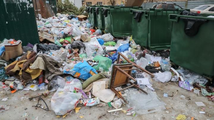 «Зачем доверили город дилетантам?»: волгоградский регоператор ТКО провалил уборку города