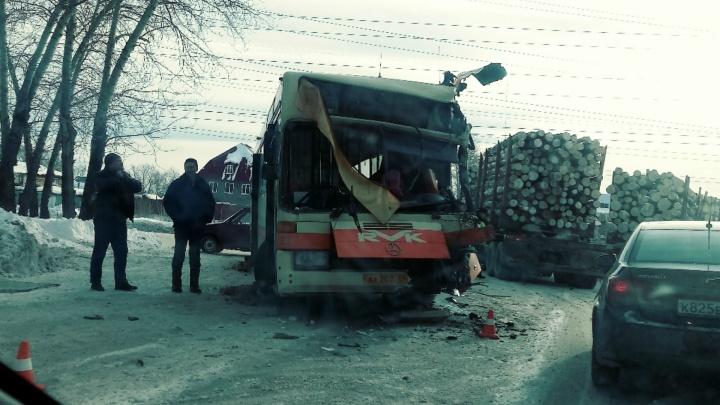 В Краснокамске водитель рейсового автобуса пострадал в ДТП с лесовозом