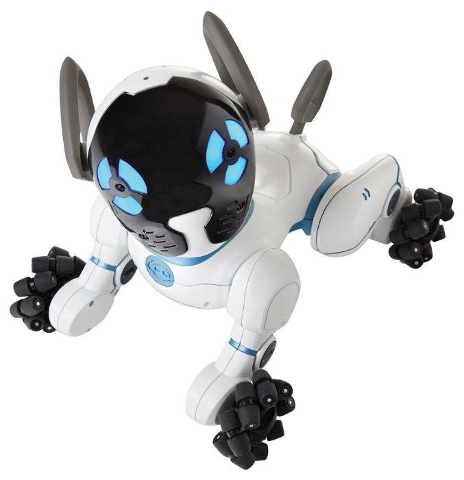 Робот может стать альтернативой настоящему животному