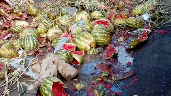 Улицу в Ленинском районе засыпали арбузами