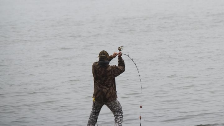 Два года тюрьмы грозит браконьерам в Ростовской области за 14 рыб