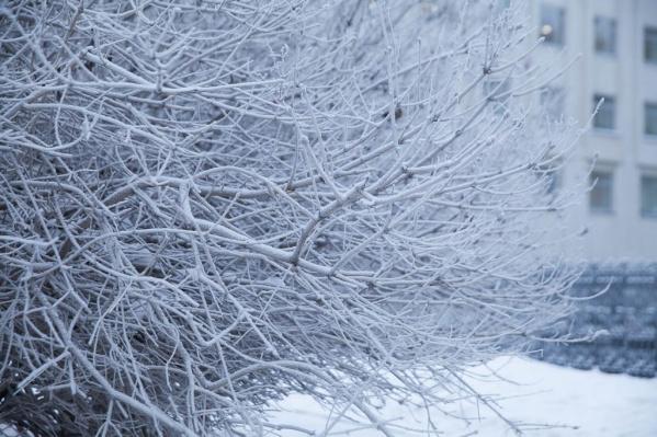 Такие жесткие погодные условия в Тюменской области могут продержаться несколько дней