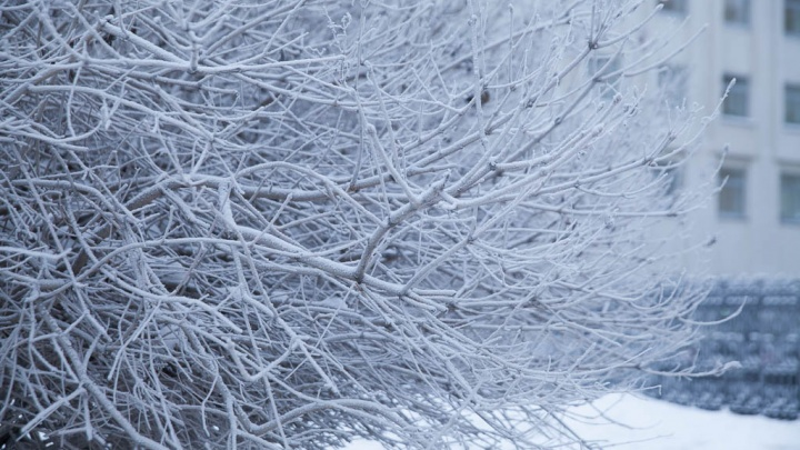 На Тюмень надвигаются экстремальные морозы. Ожидается до - 47 градусов