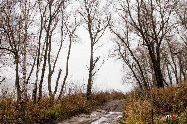 Мальчишка ходил пешком в Даниловском районе