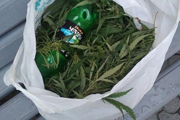 В колонию на Парашютной через забор подбросили пакет конопли