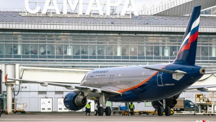 Ленин или Репин? Финальное голосование за второе имя для аэропорта Курумоч стартует 12 ноября
