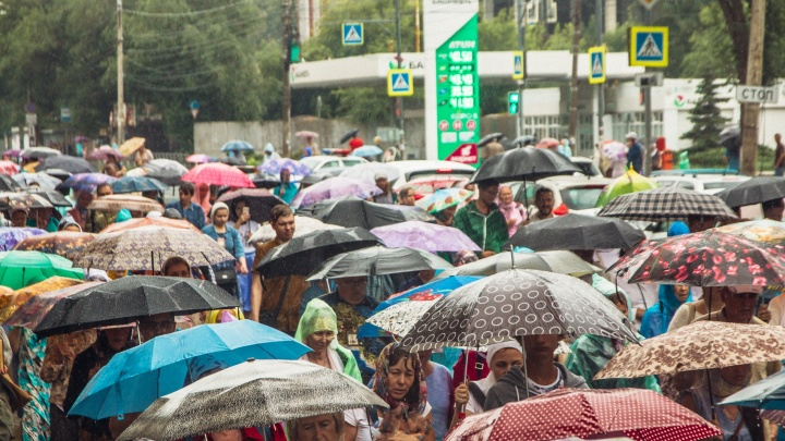 Тепло, но мокро: синоптики рассказали, какая погода будет на этой неделе в Самарской области