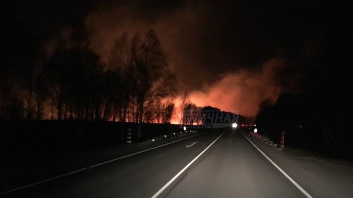 Под Тюменью из-за неосторожности рыбаков и охотников выгорела лесозащитная полоса