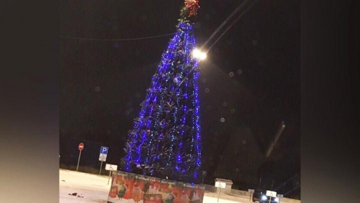 Сверкает огнями, укутанная в гирлянду: в Тюмени установили и нарядили первую новогоднюю ёлку