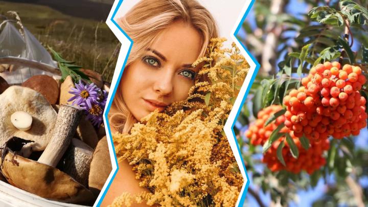 Покажи свой Instagram: теплый сентябрь и нижегородские костры рябин