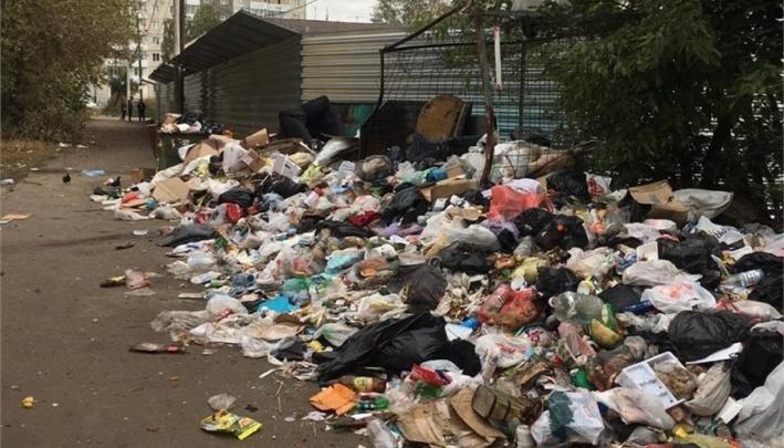 «Мэр нагло врет»: жители «Черемушек» опровергли слова Ерёмина о помощи в вывозе мусора