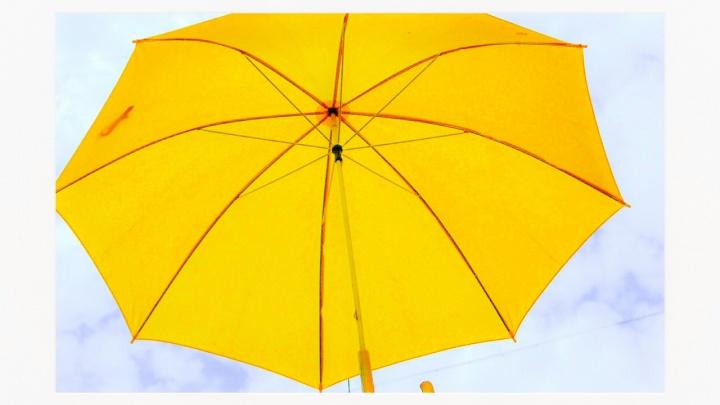 «Волгограду идет ярко-желтый»: фотограф показал цвет Солнца дождливому городу