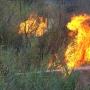 В районе Кумженской рощи в Ростове вспыхнул пожар