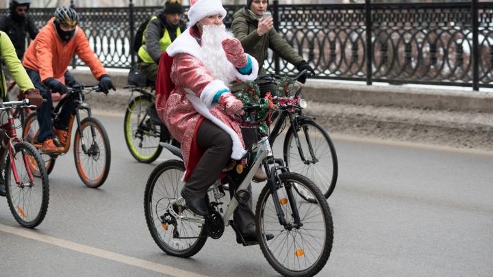 «Нужен праздник»: участники зимнего парада в Волгограде посадили на велосипед искусственную елку