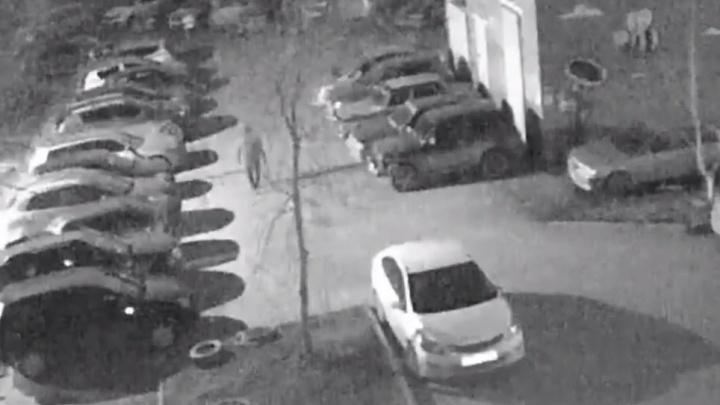Знал, где стоит: камеры видеонаблюдения сняли, как подожгли машину на Автомагистральной