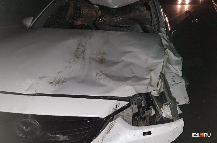 Водитель этой машины сбил лося на Ново-Московском тракте