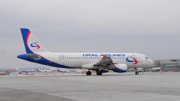 Самолет «Уральских авиалиний», в котором нашли записку о бомбе, приземлился в Москве