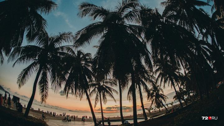 Тюменка осталась без новогоднего отпуска в Таиланде, который оплатила полгода назад
