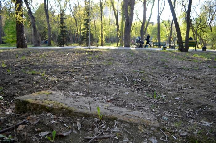 Плиты, которые иногда попадаются в Зеленой Роще, — надгробные