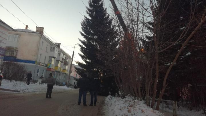 Случайно перепутали: на Южном Урале ледовый городок украсили ёлкой, срубленной у соседнего магазина