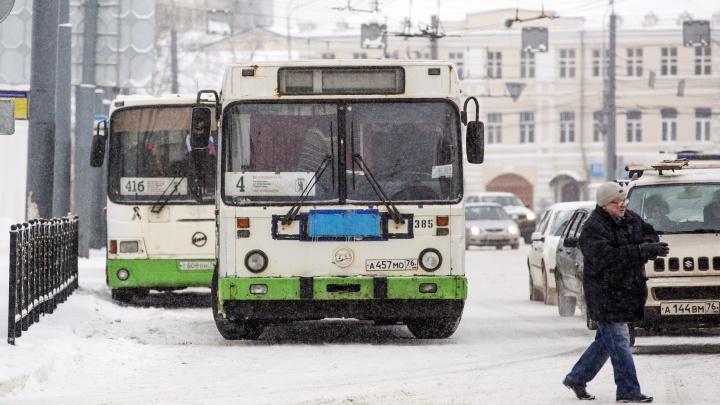 «Хватит замалчивать проблемы»: и. о. мэра Ярославля нашёл виноватых в транспортном сбое