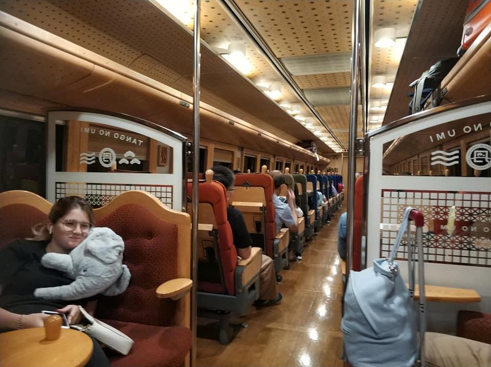 Поезд, вагоны которого отделаны деревом, с отдельной локацией под питание с парой-тройкой столиков. С почти открытой кабиной машиниста с помощниками, которые кланяются пассажирам