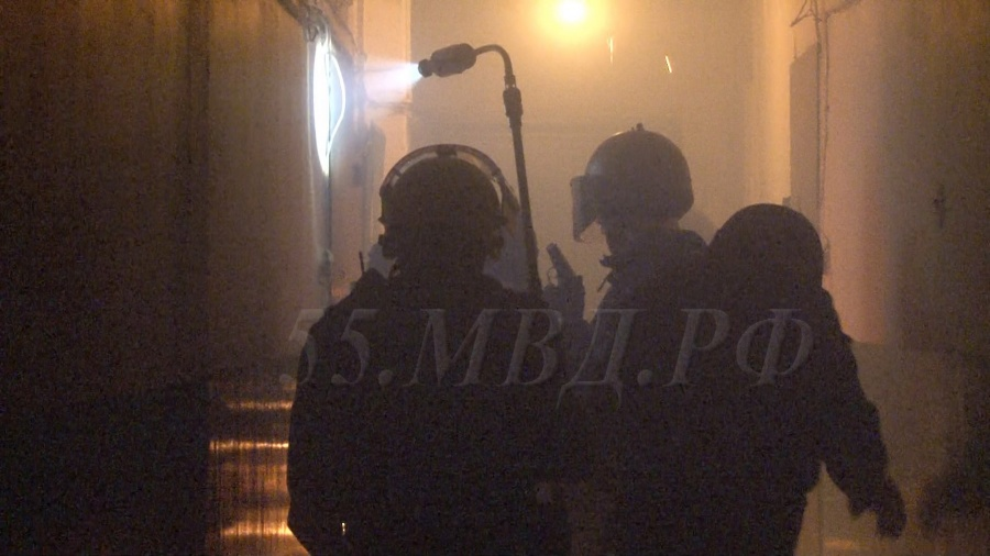 ВОмске подозреваемый вубийстве сожительницы совершил самоубийство при задержании