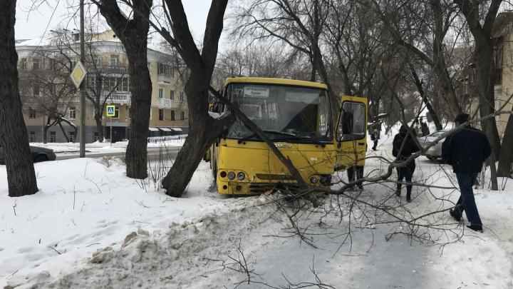 Во Втузгородке коммерческий автобус столкнулся с двумя легковушками