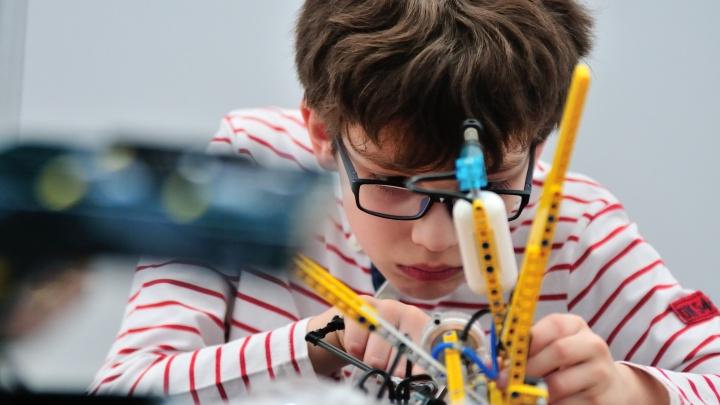 50 тысяч в месяц не предел: сколько екатеринбуржцы тратят на дополнительные занятия для детей