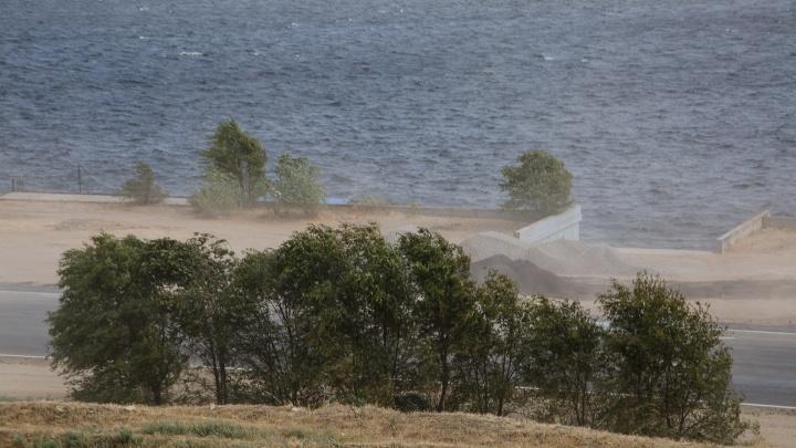 Без дождей, но с грозами: в Волгоградской области ожидается сильный ветер и жара+33 ºС