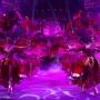 Гигантские фризы, пеликаны и даже лигр. Гуляем по закулисью всемирно известного цирка Гии Эрадзе