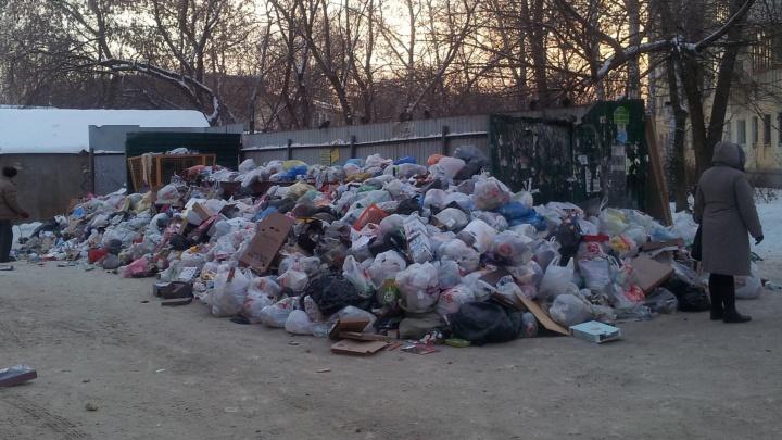 """""""Контейнеров уже не видно"""": на Вторчермете во дворе помойка превратилась в огромную мусорную кучу"""